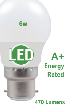 LED Energy Efficient Loft Light Bulb & Pull Switch
